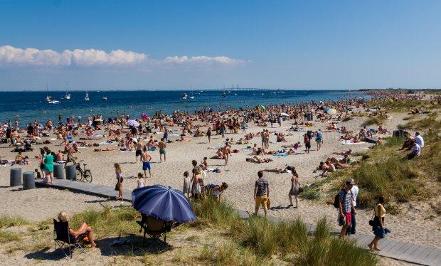 Guide 2021: 9 restauranter tæt ved vandet i København med 1/3 skåret af prisen