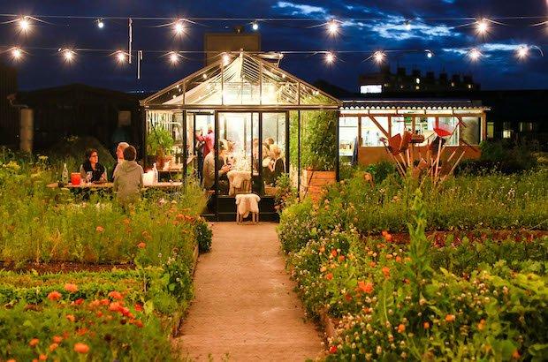 Guide 2021: 8 populære restauranter på Østerbro med 1/3 skåret af prisen