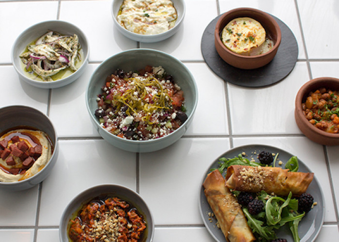 restaurant-mangal-kobenhavn-vesterbro-5311