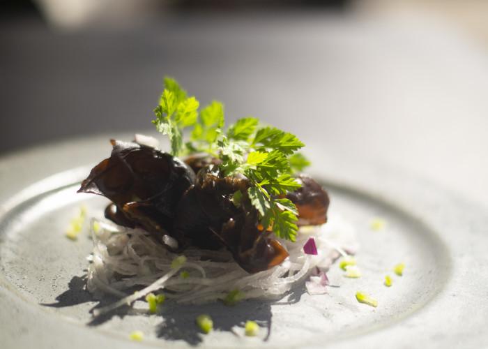 restaurant-midori-izakaya-and-greenery-kobenhavn-indre-by-7241