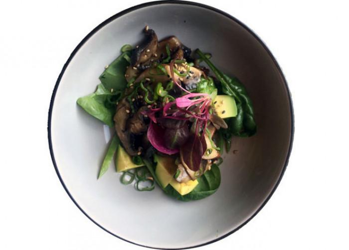 restaurant-midori-izakaya-and-greenery-kobenhavn-indre-by-4489