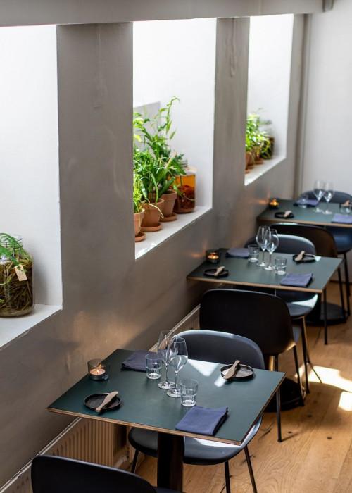 restaurant-restaurant-meille-kobenhavn-indre-by-8231